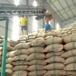 RMIDAN Commends FG Ban of Rice Importation through Land Borders