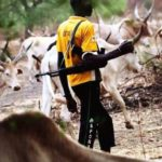Forensic Experts Storm Nimbo Community