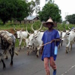 Southern Kaduna Communities Told to Defend Themselves against Murderous Fulani Herdsmen