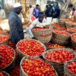 Prices of garri, rice, tomatoes remain high in Lagos