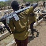 Fulani herdsmen kill 13 Tivs in Taraba over land dispute