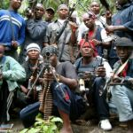 We never agreed ceasefire with FG – Niger Delta Avengers