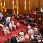 Sani-Omolori confirmed Clerk of National Assembly