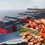 Forum exposes Nigeria's poor preparation for non-oil exports