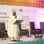 Economic growth: experts canvass support for fortified food processors