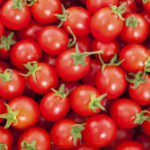 Erisco, Asian firms plan tomato factory in Katsina